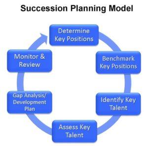 Succession Planning Model-S